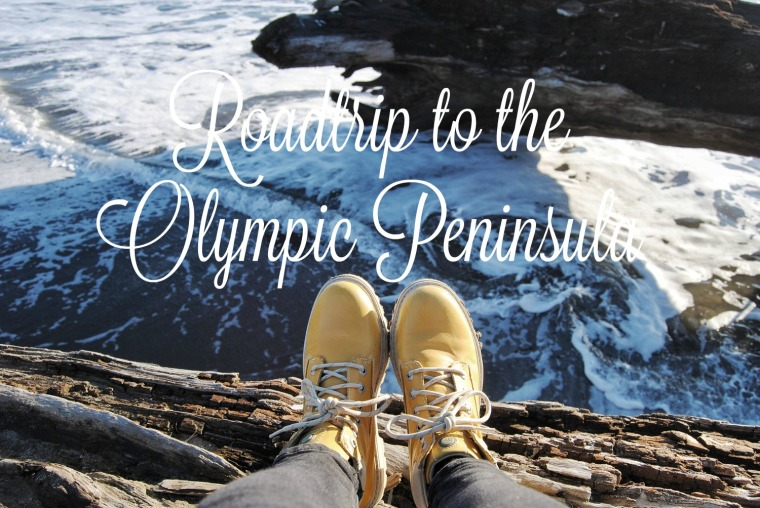 Roadtrip to the olympic peninsula