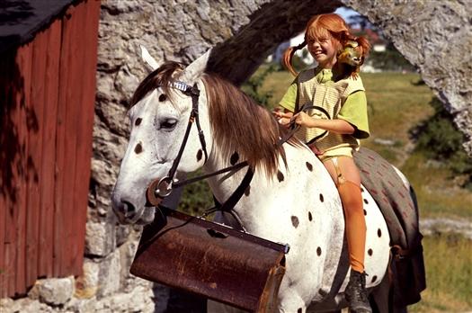 pippihorse